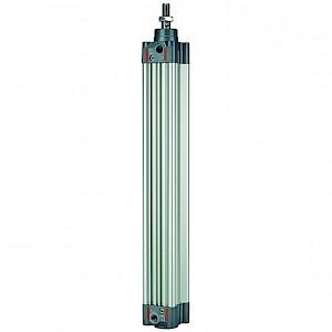 RIEGLER® - Normzylinder, doppeltwirk., Magnet, Kolben-Ø 100, Hub 320, G 1/2