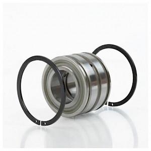 INA - Zylinderrollenlager SL045017 DPP2NR