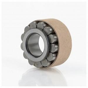 INA - Zylinderrollenlager RSL182220