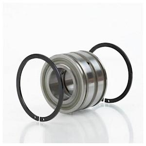INA - Zylinderrollenlager SL04200 DPP