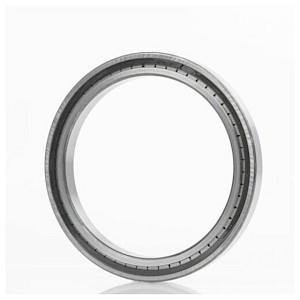 INA - Zylinderrollenlager SL185032