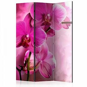 artgeist Paravent Pink Orchid [Room Dividers] rosa/grün Gr. 135 x 172