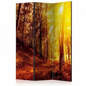 artgeist Paravent Autumn Walk [Room Dividers] mehrfarbig Gr. 135 x 172