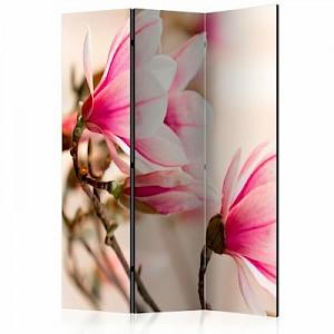 artgeist Paravent Branch of magnolia tree [Room Dividers] mehrfarbig Gr. 135 x 172