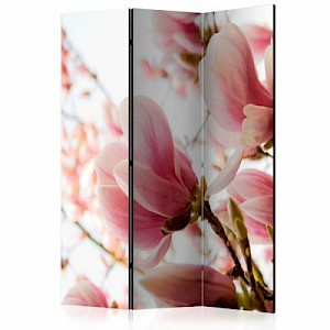 artgeist Paravent Pink magnolia [Room Dividers] mehrfarbig Gr. 135 x 172