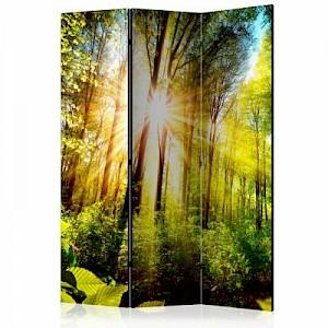 artgeist Paravent Forest Hideout [Room Dividers] mehrfarbig Gr. 135 x 172