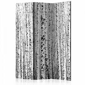 artgeist Paravent Birch forest [Room Dividers] schwarz/weiß Gr. 135 x 172