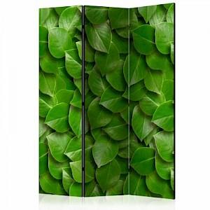 artgeist Paravent Secret Garden [Room Dividers] grün Gr. 135 x 172