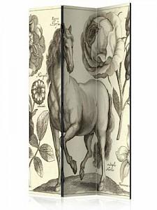 artgeist Paravent Horse [Room Dividers] creme/grau Gr. 135 x 172