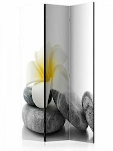 artgeist Paravent White Lotus [Room Dividers] grau/weiß Gr. 135 x 172