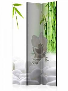 artgeist Paravent Lake of Silence [Room Dividers] grün-kombi Gr. 135 x 172