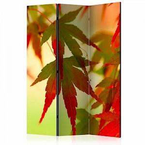 artgeist Paravent Colourful leaves [Room Dividers] mehrfarbig Gr. 135 x 172