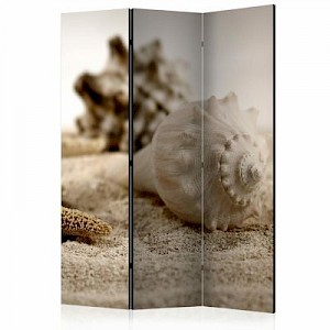 artgeist Paravent Beach and shell [Room Dividers] beige Gr. 135 x 172