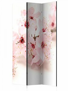 artgeist Paravent Cherry Blossom [Room Dividers] creme/rosa Gr. 135 x 172
