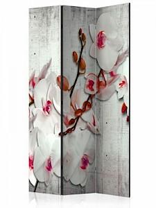 artgeist Paravent Concrete Orchid [Room Dividers] grau-kombi Gr. 135 x 172
