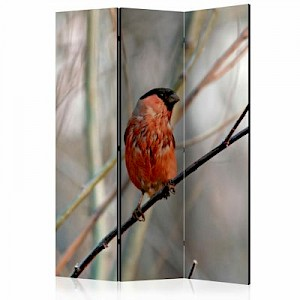 artgeist Paravent Bullfinch in the forest [Room Dividers] mehrfarbig Gr. 135 x 172