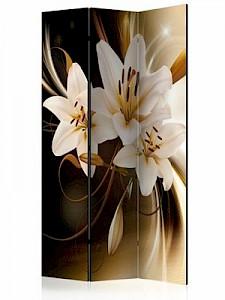 artgeist Paravent Circle of Light [Room Dividers] braun/beige Gr. 135 x 172