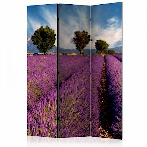 artgeist Paravent Lavender field in Provence, France [Room Dividers] mehrfarbig Gr. 135 x 172